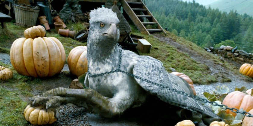 Harry Potter Beast